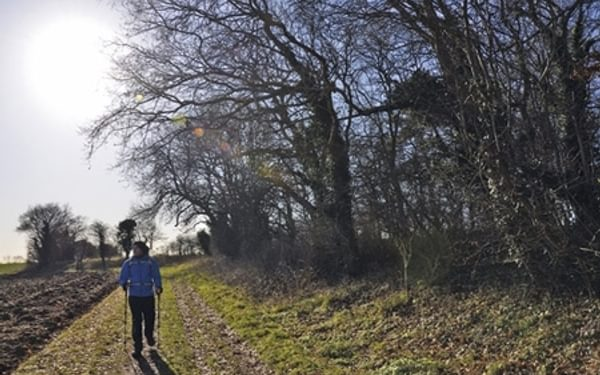 Discover the Peddars Way and Norfolk Coast Path