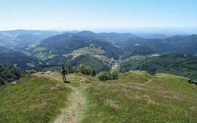 Visit Germany's Black Forest
