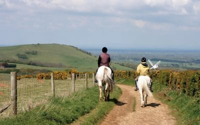Horse Riding In The South Downs National Park
