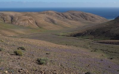 Walking In Lanzarote And Fuerta Ventura Cicerone Guide