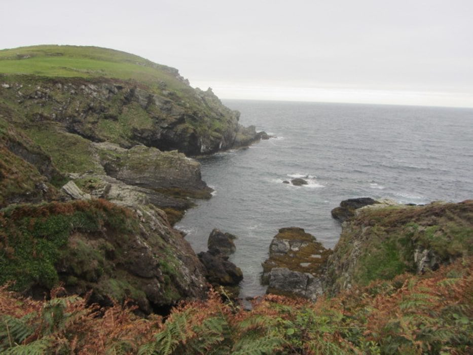 Sea Cliffs Near The Sound: Walk 1