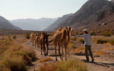 History of the Jordan Trail