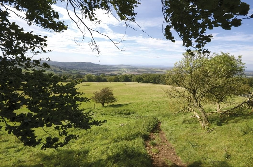 Fancy a walk in the Cotswolds?