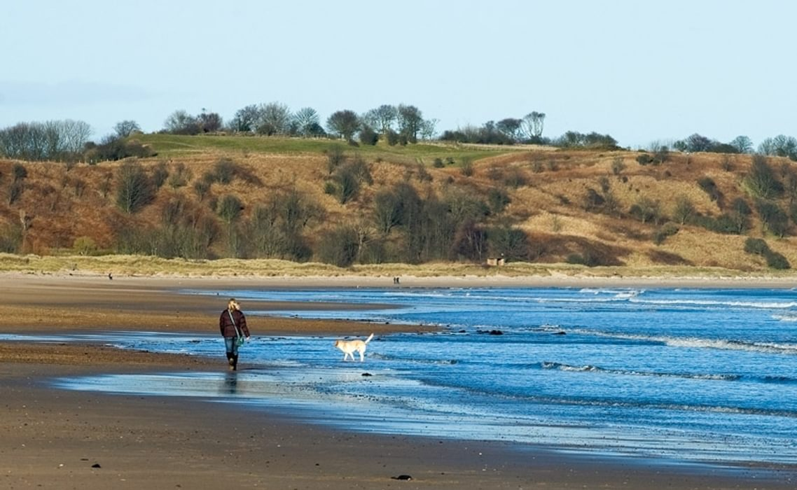 The beach near Alnmouth
