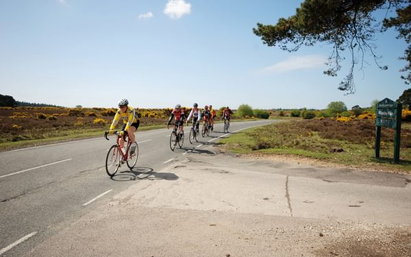 What is a sportive?