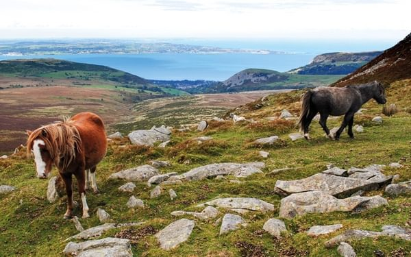 An intro to... The Snowdonia Way: a new route through Wales