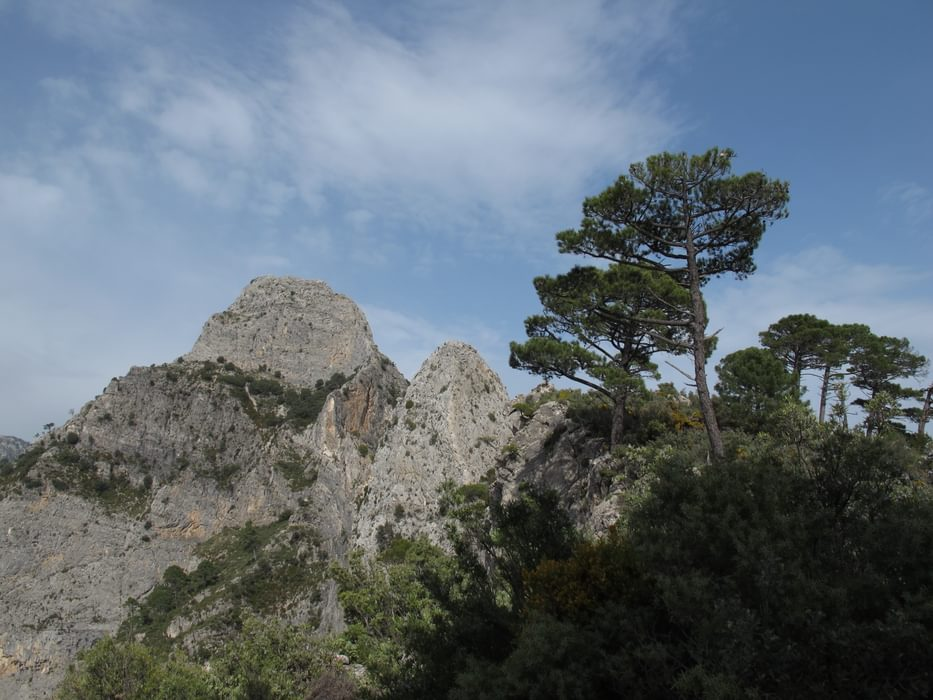 A view to the summits of Tajo de Alemendrón and El Torre de Alemendrón