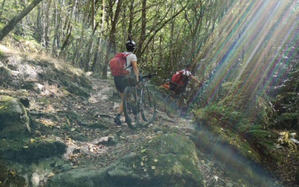 Enchanting morning hike with bike