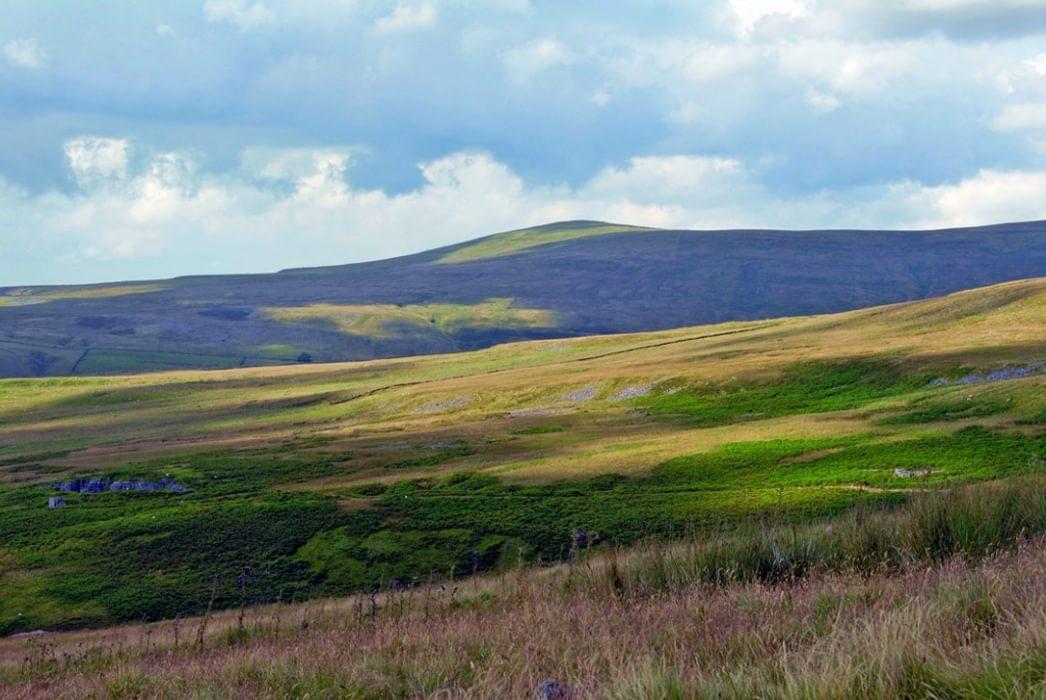 Thack Moor