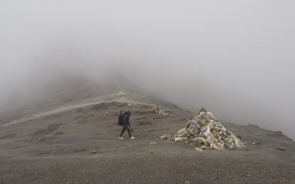 The Misty Jungben La 5557M Our Highpoint