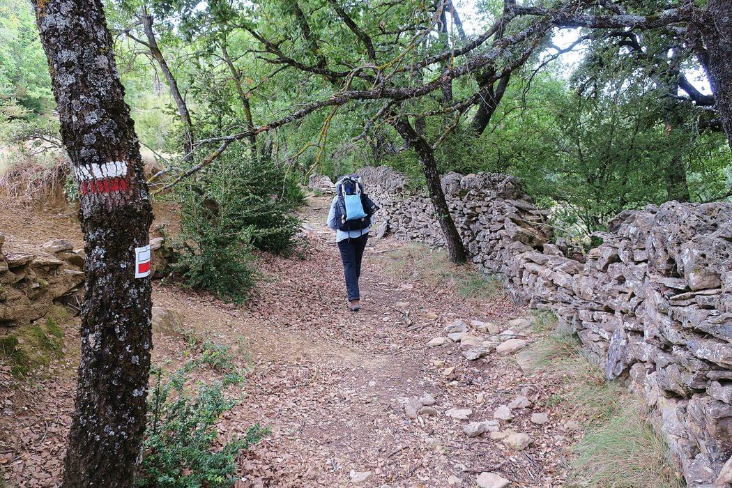 few hikers