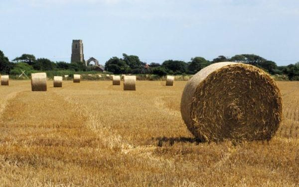Suffolk is the ideal place for a quick and easy long-distance walking holiday