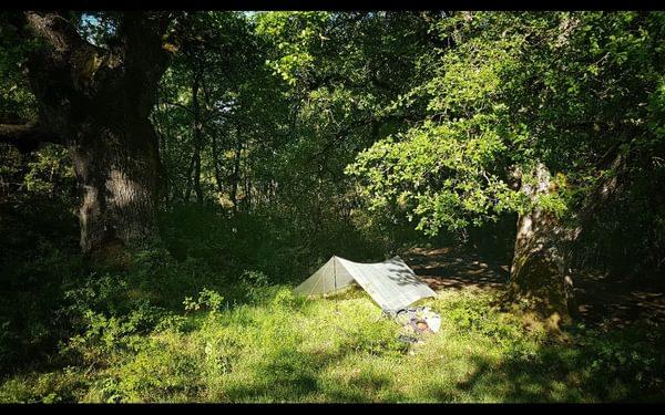 Day 33 Bivouac Near Santa Cruz De Campezo Guarded By Two Mighty Oaks