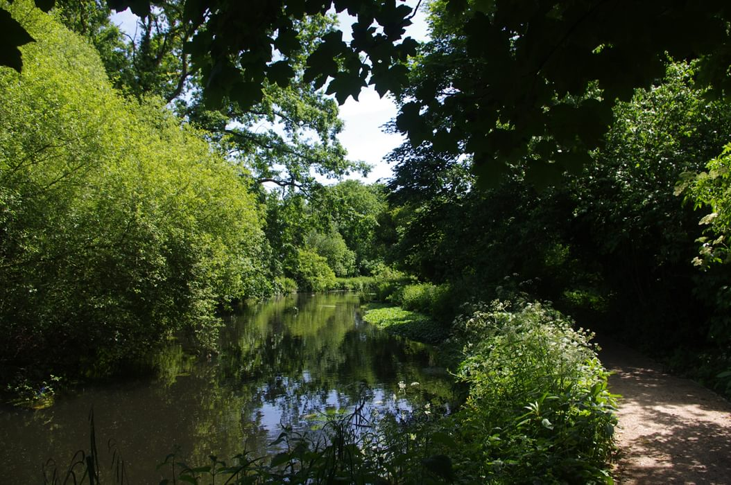 A Quiet Stretch Of The Wandle In Watermeads Nature Reserve