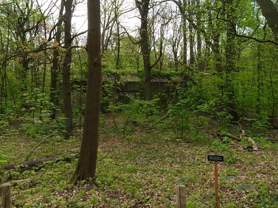 German bunker now a reservation for bats (vleermuisreservaat) near Hoek van Holland (Netherlands) on the GR5
