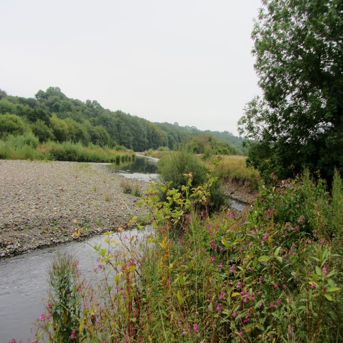 The River Caldew