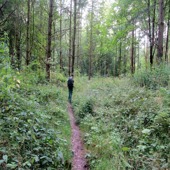 Neil In Dentonside Wood