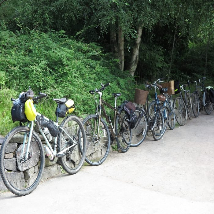 A row of bikes ready to go