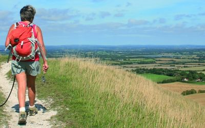 Views of the Weald near Alciston, South Downs National Park