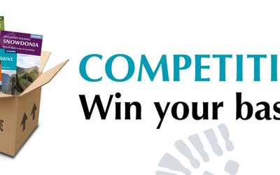Win Your Basket competition