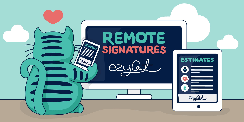 Remote Signatures