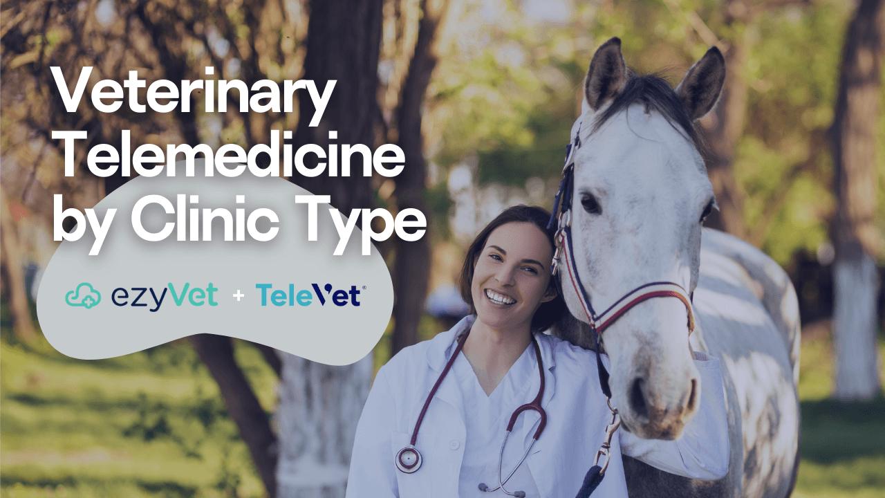 Veterinary Telemedicine by Clinic Type