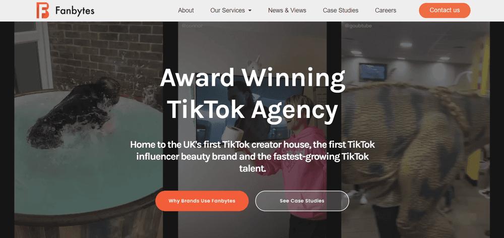Top TikTok Influencer Agency