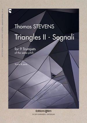 Stevens  Thomas  Triangles 2  Tp307