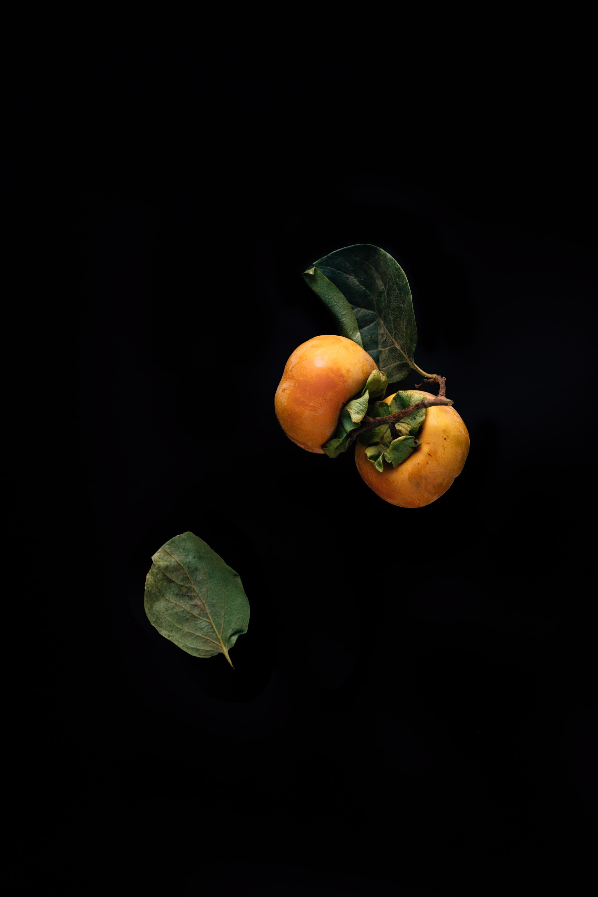 Erol, Two Persimmons