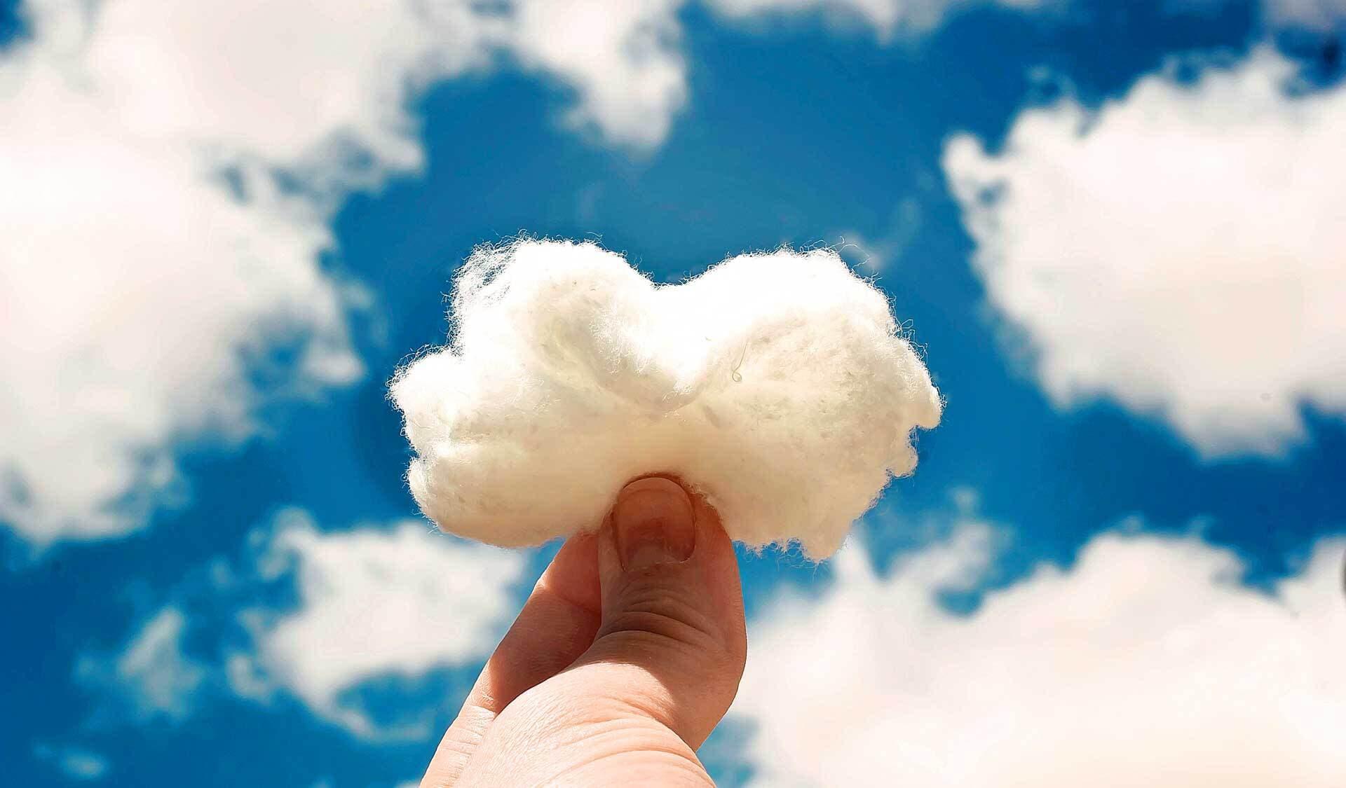 Ein Büschel Baumwolle vor blauem Himmel, das den weißen Wolken darn ähnelt.
