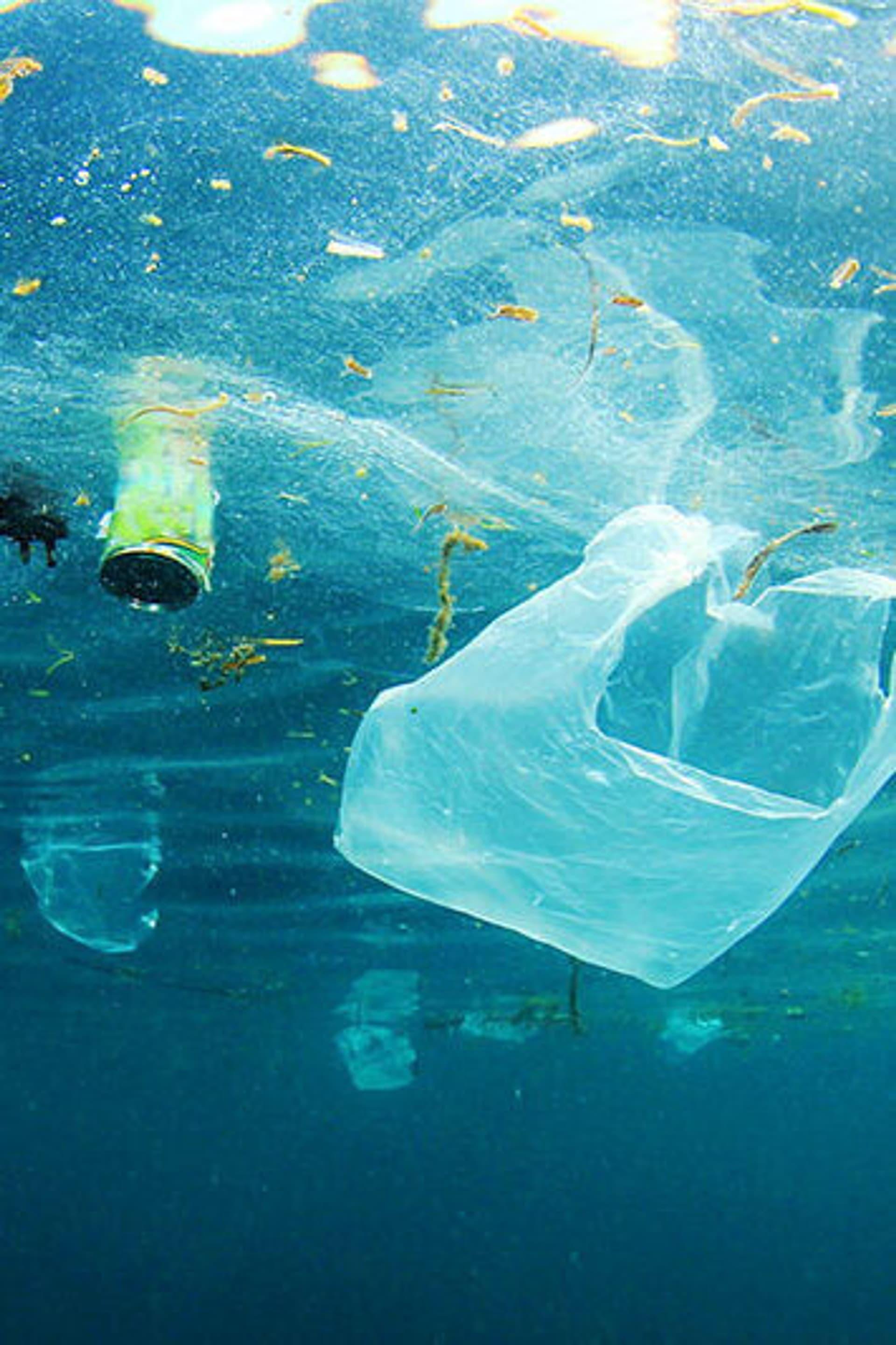 Plastiktüten und Plastikdosen schwimmen im Meer