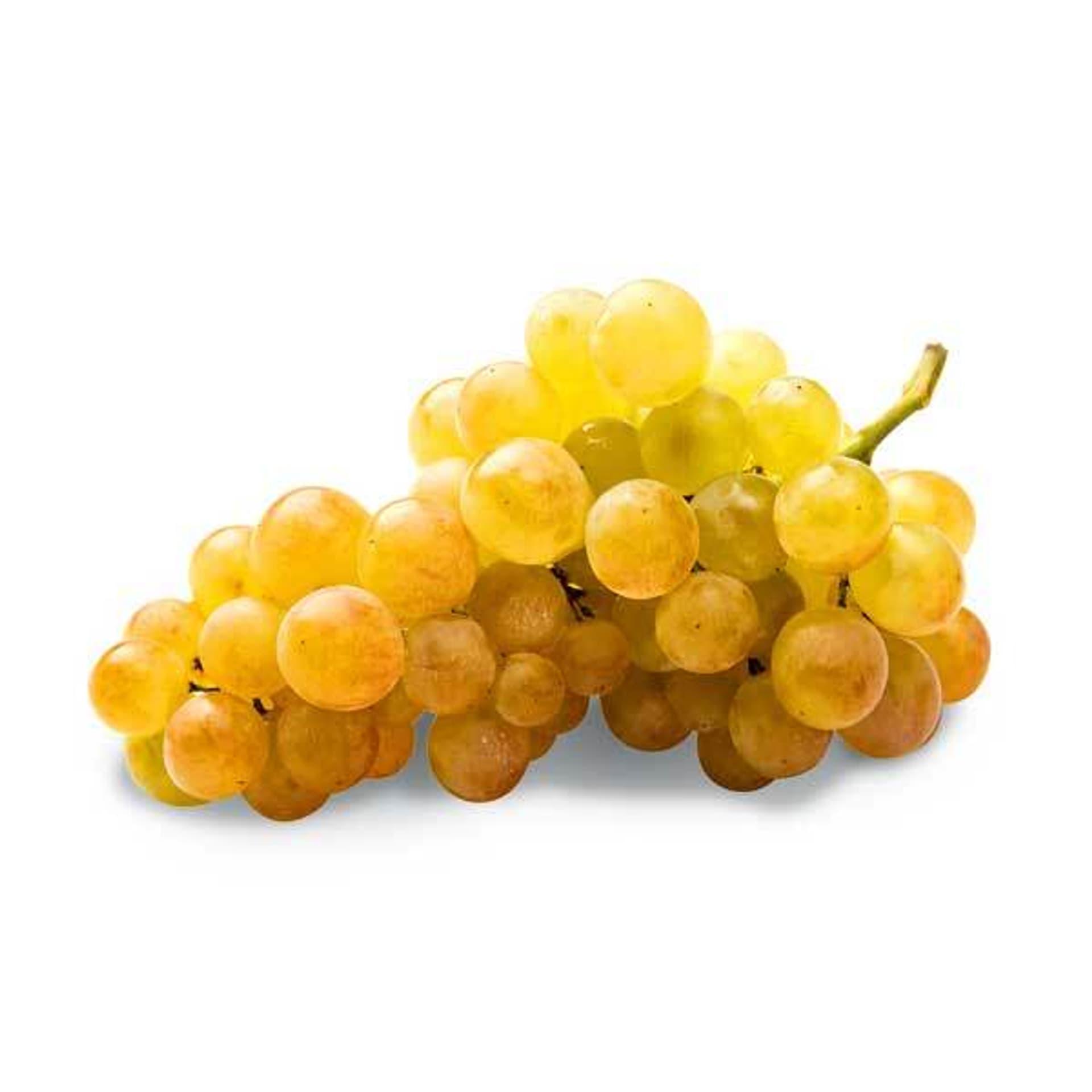 Gold-gelbe Weintrauben Palatina