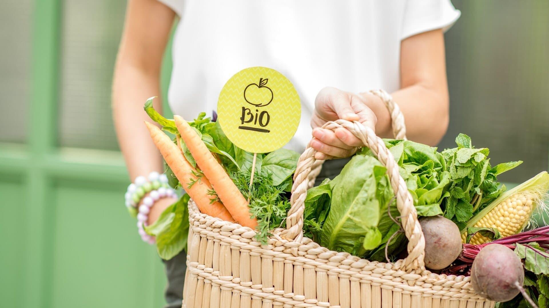 Bio, Bio-Gemüse, Einkaufskorb