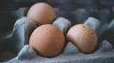 Eier im Pappkarton