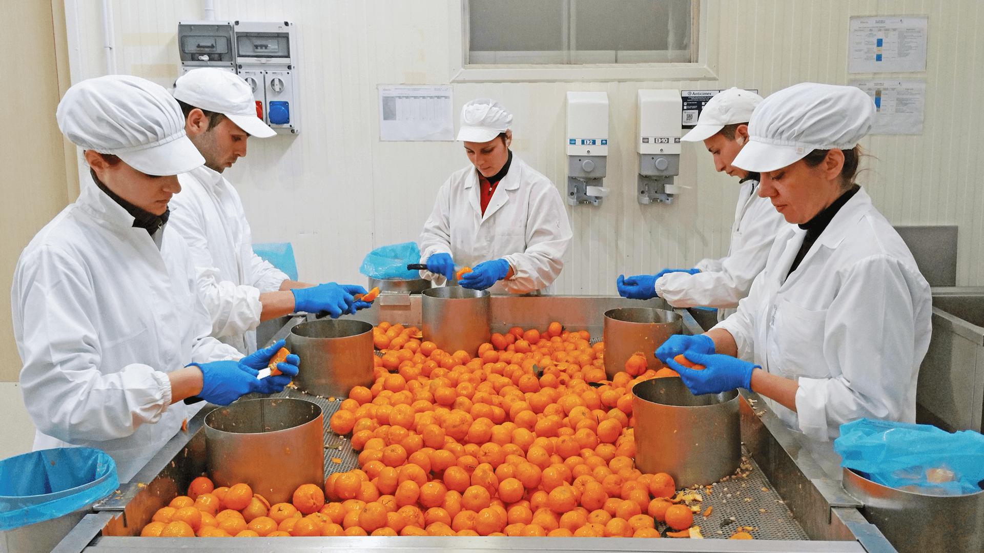 Handgeschaelte Zitrusfruechte San Vicario