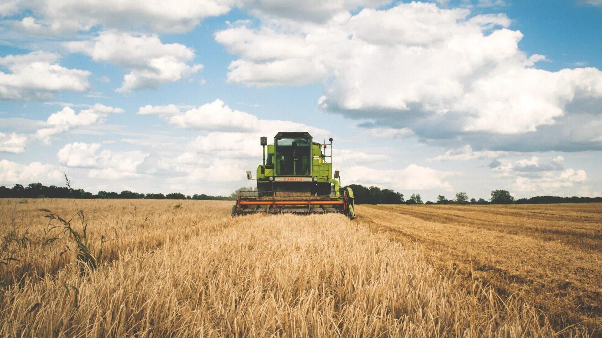 Landmaschine auf einem Getreidefeld