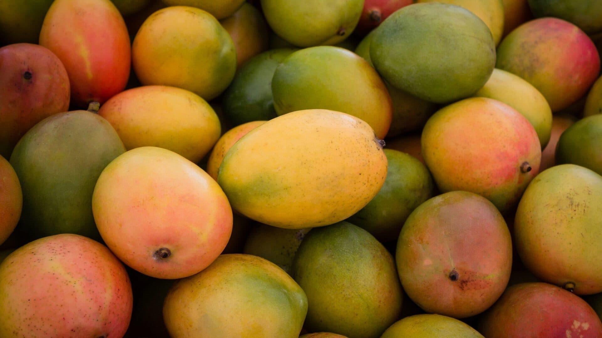 Ein Haufen Mangos