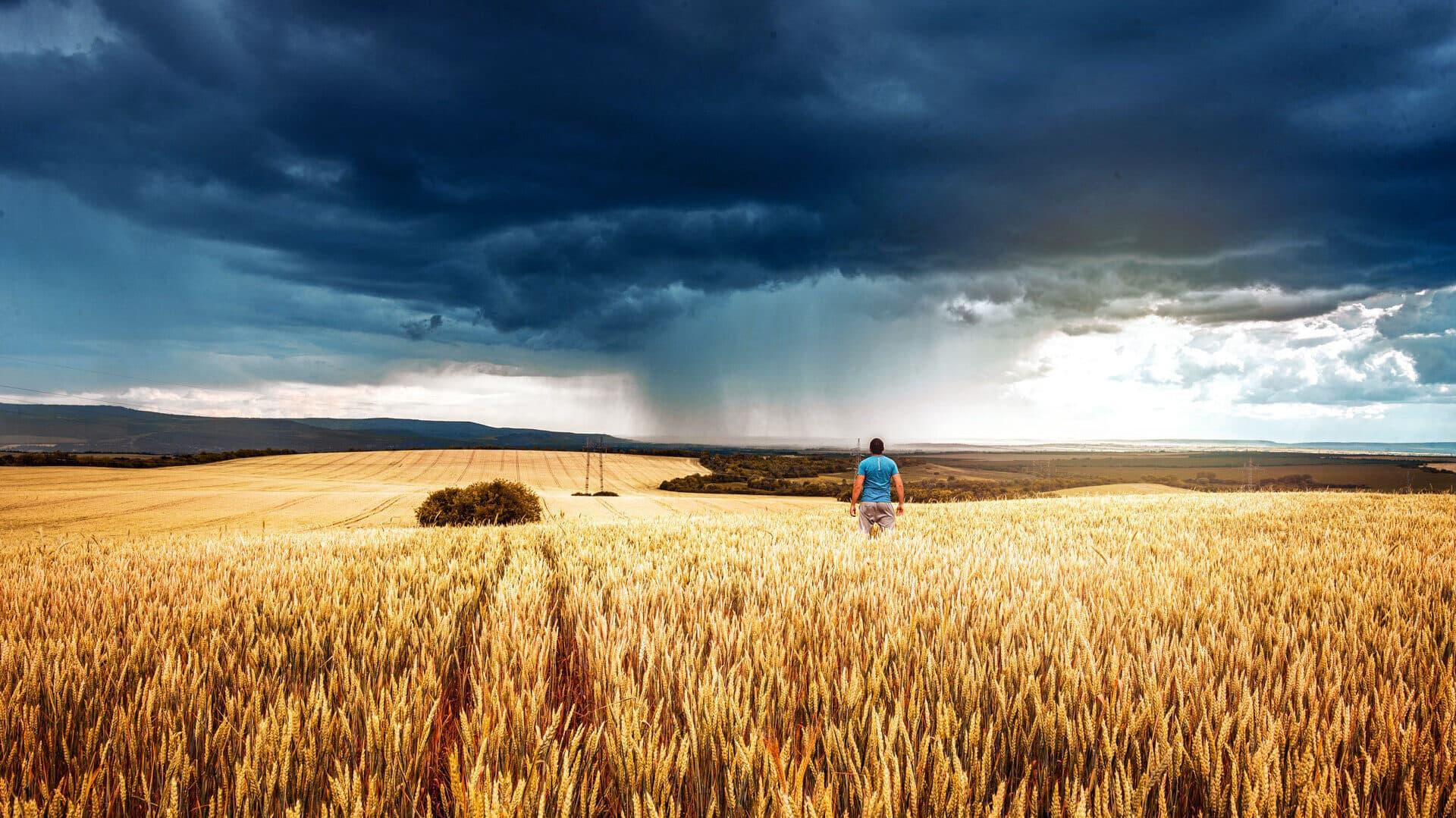 Unwetter über einem Feld