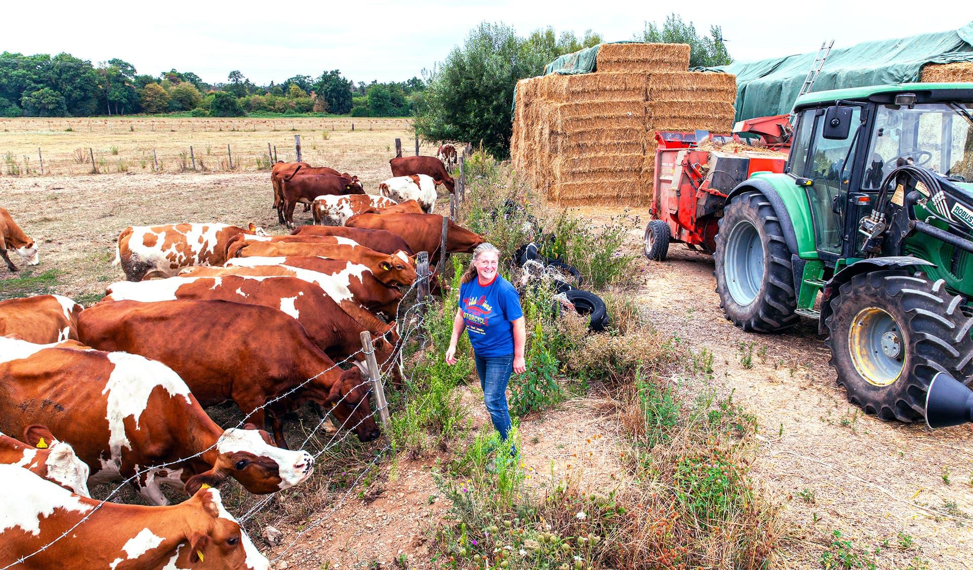 Susanne Schleinkofer mit Kühen auf ihrem Hofgut in Karlsruhe