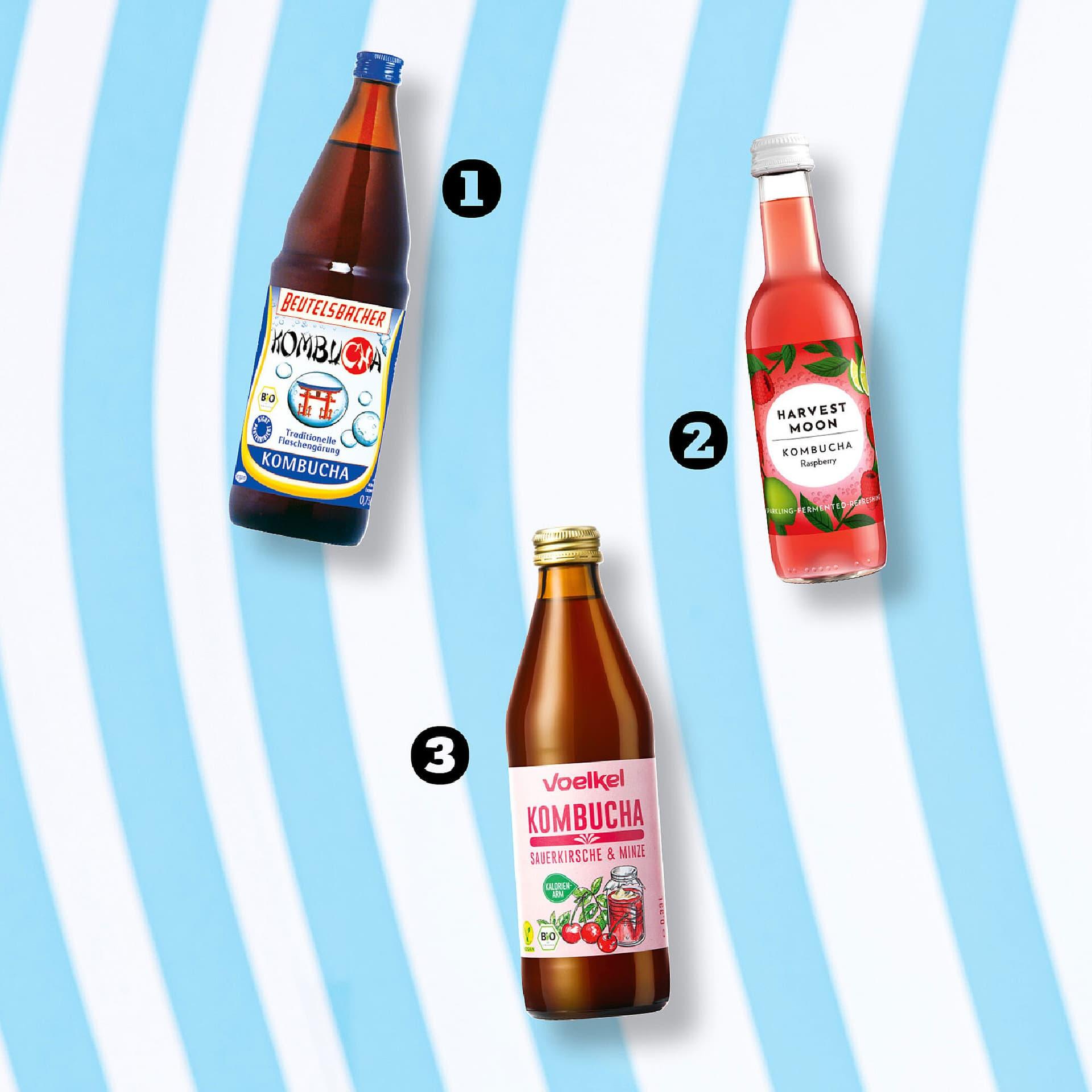 Bio Kombucha Produkte
