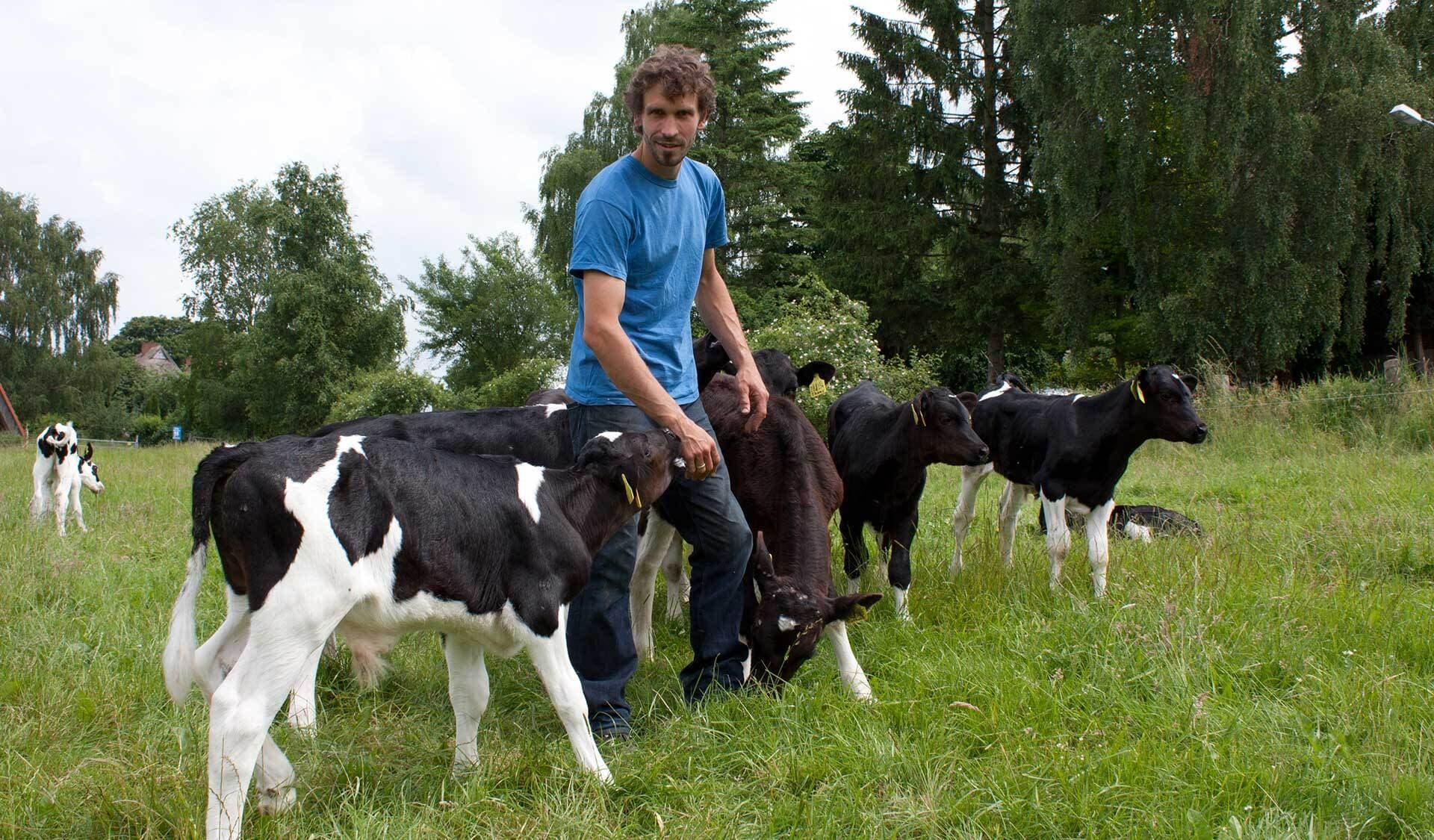 Falk Teschemacher mit Kühen
