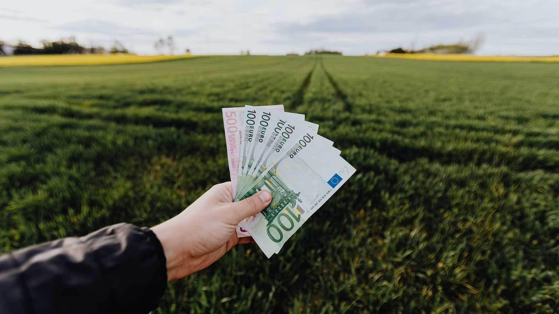 Hand mit Geldscheinen, im Hintergrund Feld