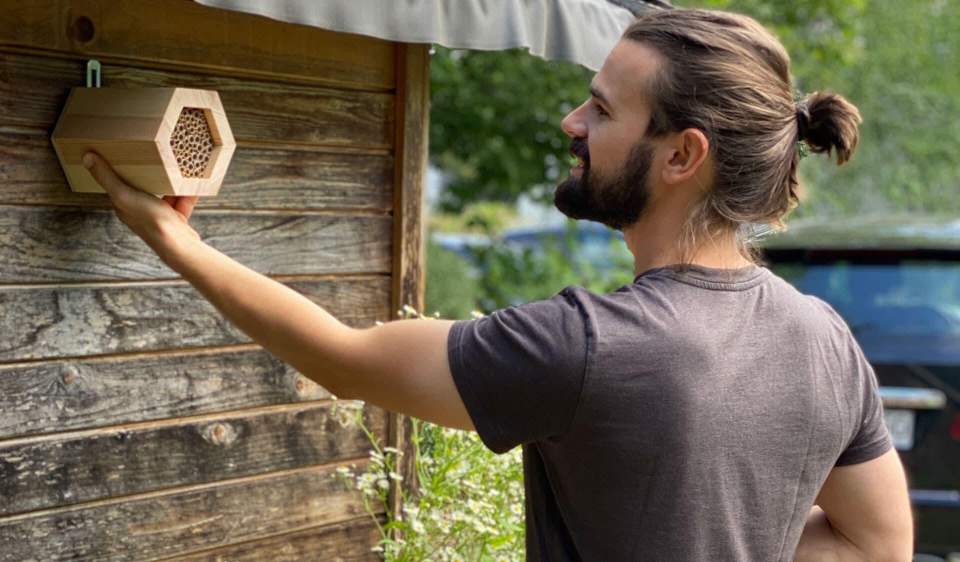 Bienen-Nisthilfen am bio verlag
