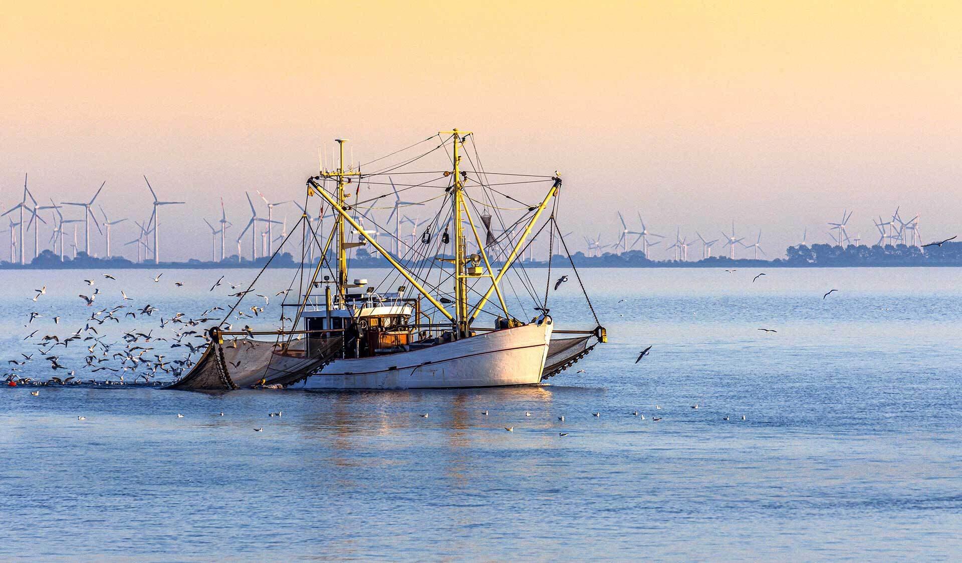 Fischkutter mit Grundschleppnetzen auf dem Meer