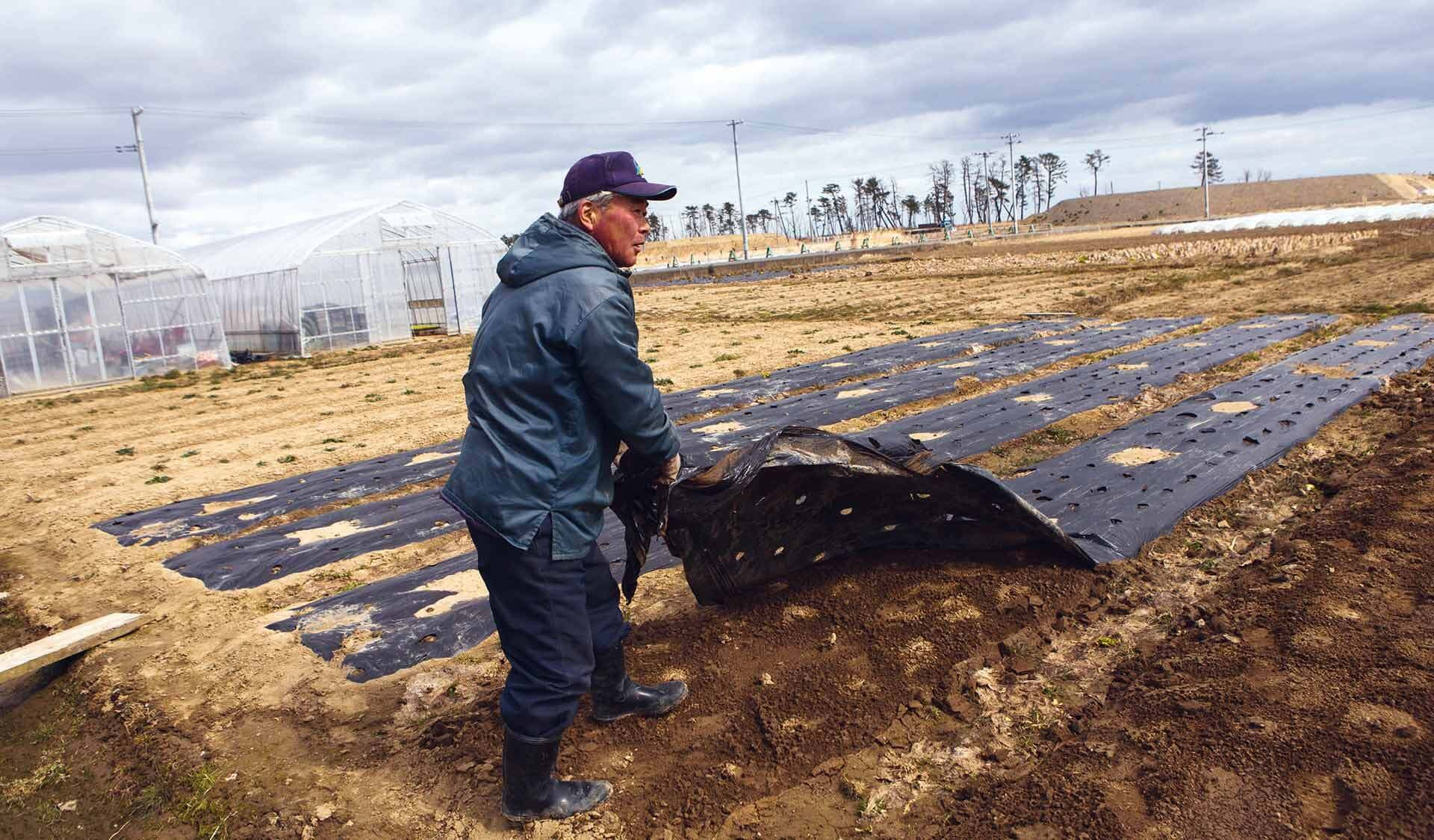 Japaner deckt Erde mit schwarzer Folie ab