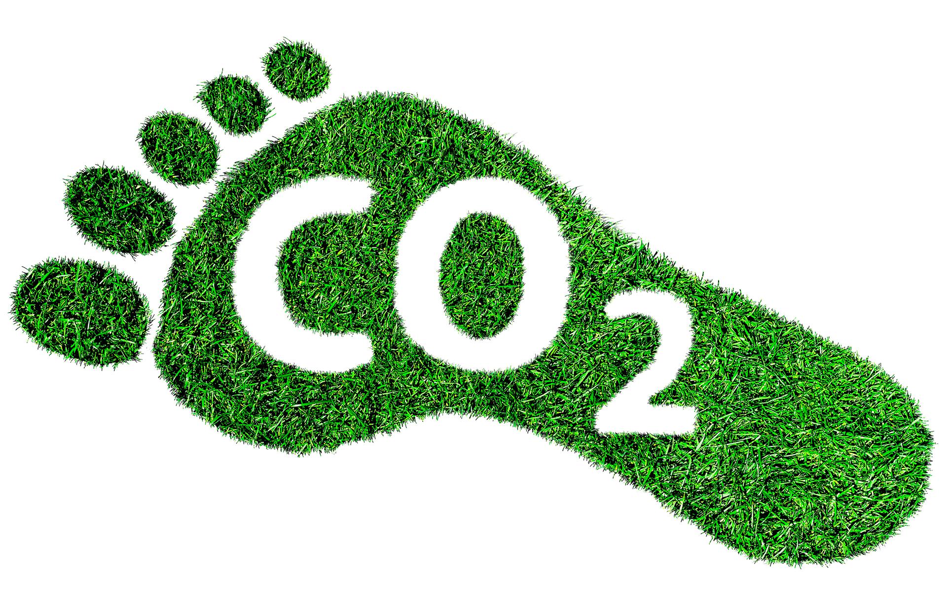 Grüner Fußabdruck mit CO2-Beschriftung