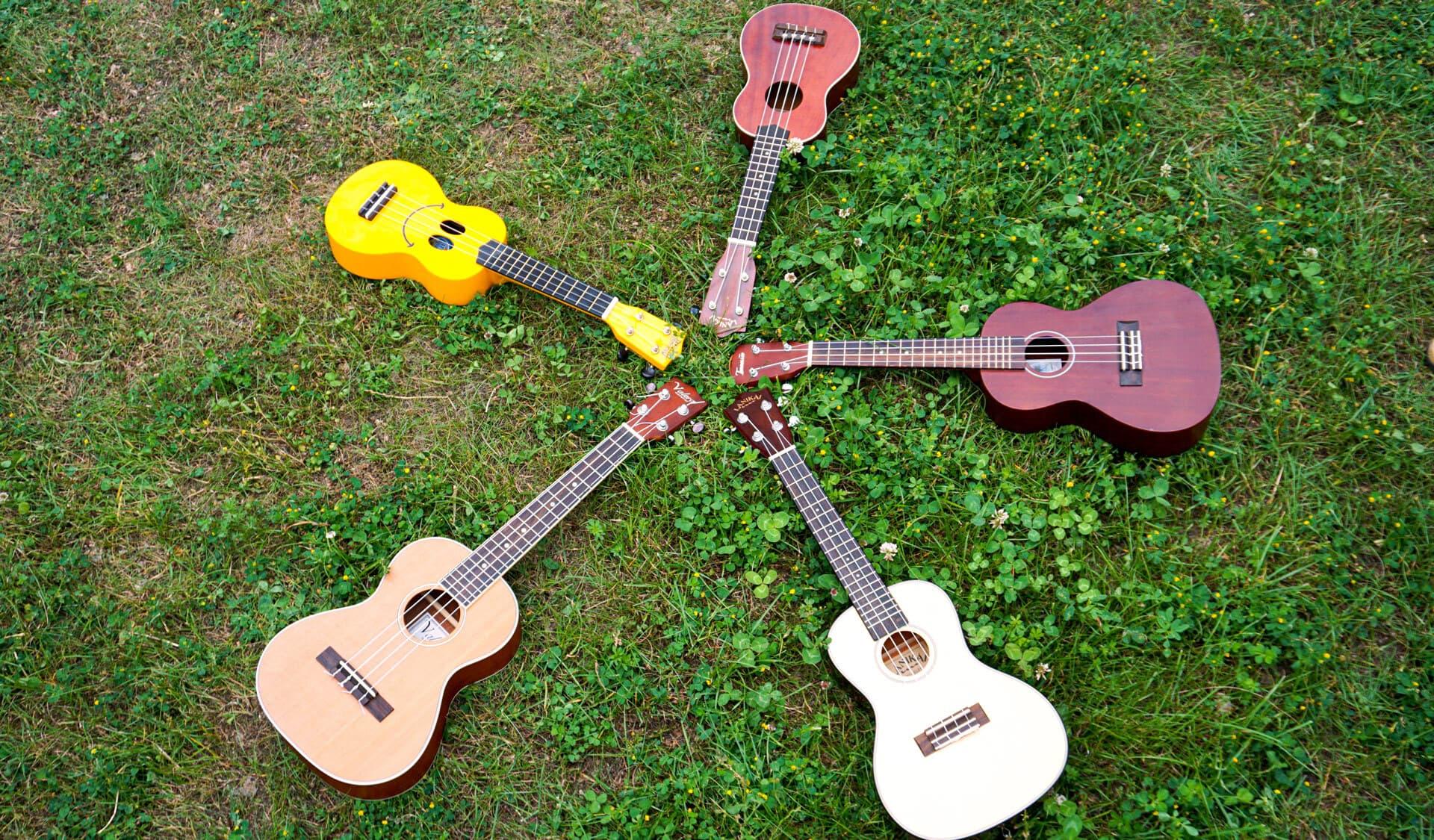 Fünf Ukulelen liegen im Gras.