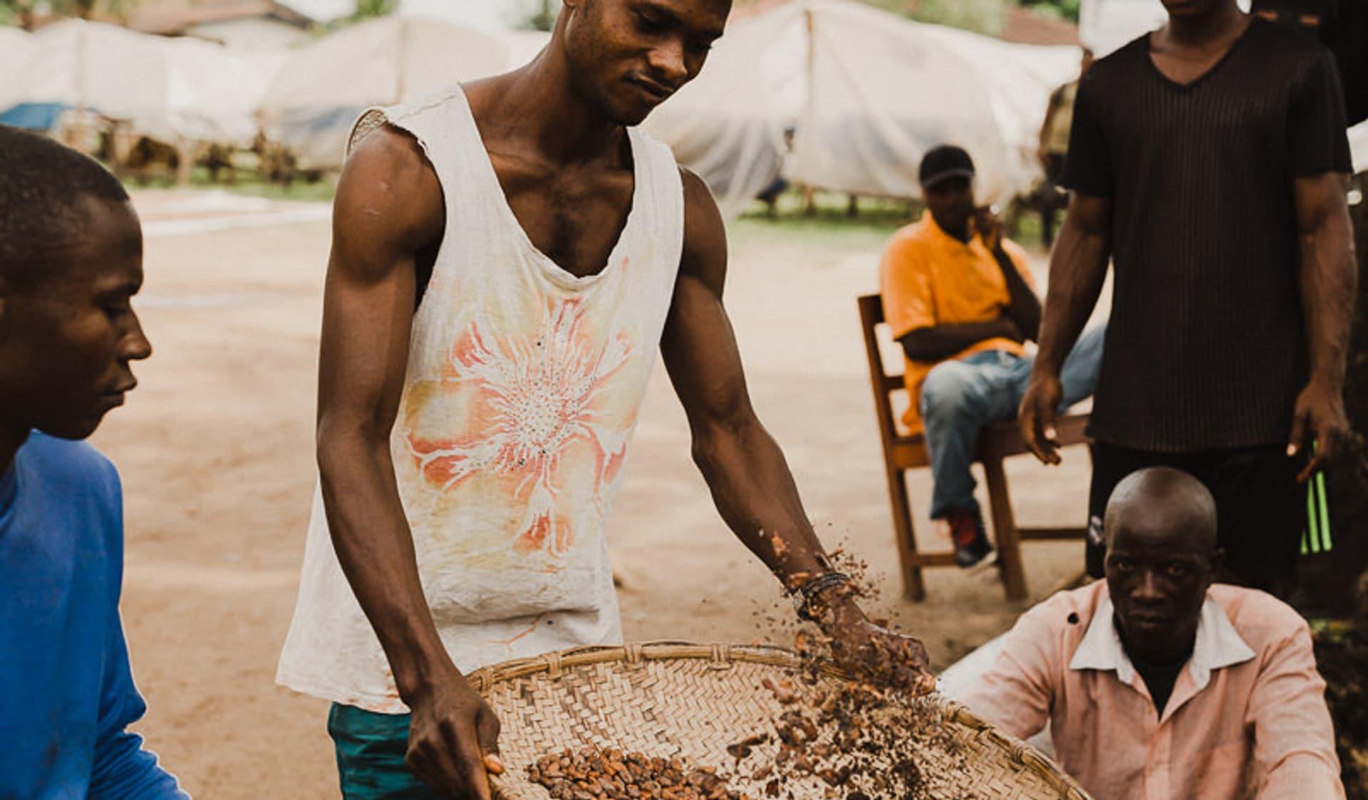 Kakaoernte, Pionierarbeit, Bio, Tradin Organic