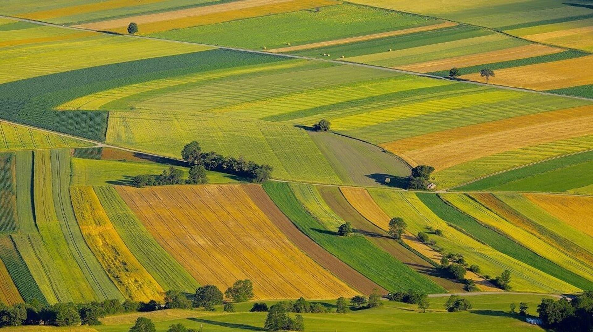 Landwirtschaft c Peter Gudella shutterstock 270683753