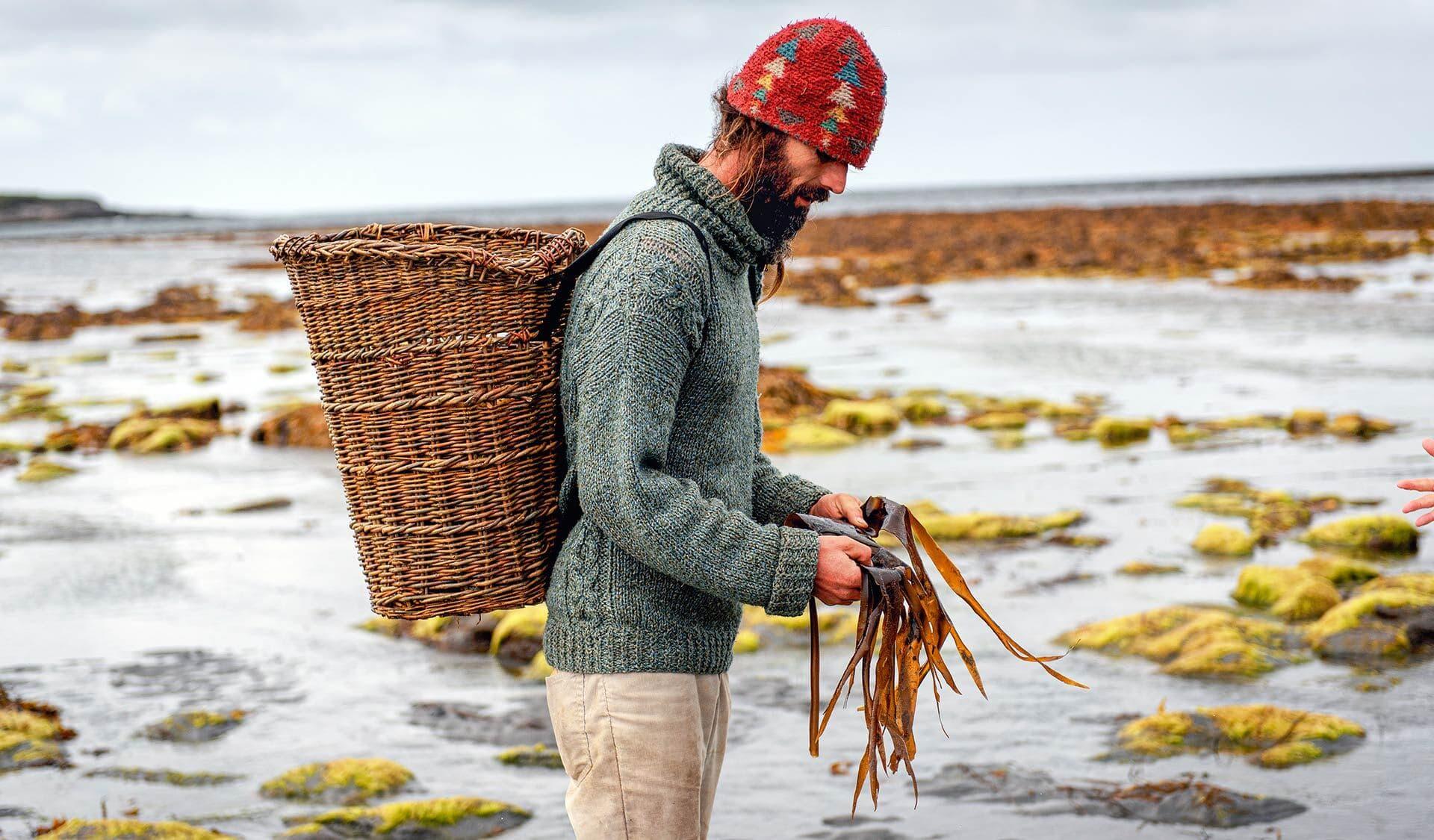 Mann sammelt Algen am Strand